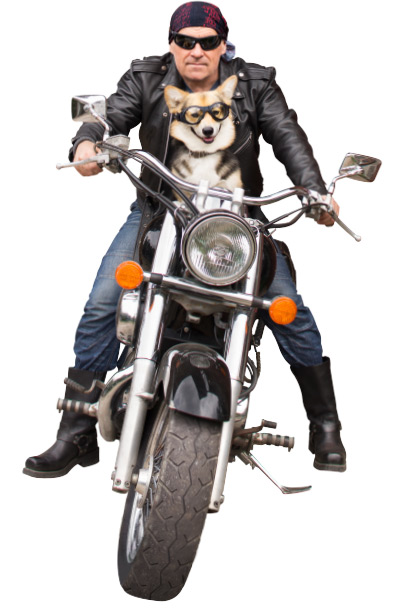 man on motorcycle with dog