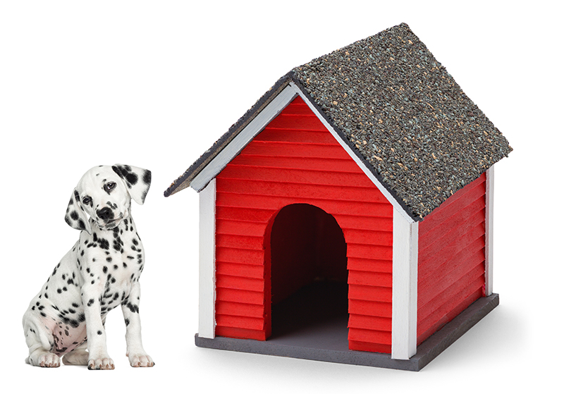 Home Financing- sparky with doghouse